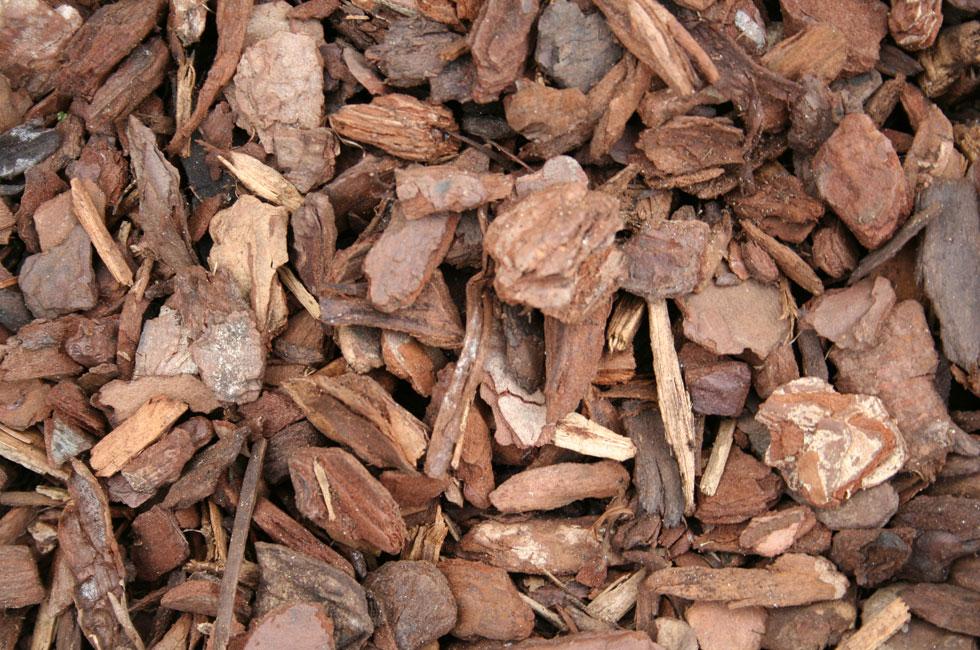 Pine Bark Chips