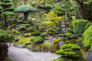 Decorative Stones Essex - Photo of a japanese-style garden